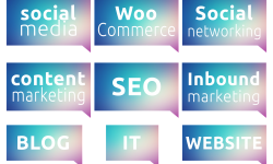 creer un site web avec wordpress